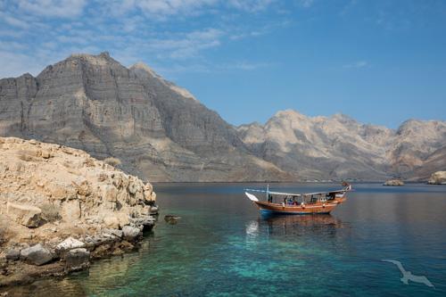 shutterstock_580967269_Oman_Khasab_Fjord_Boot_500.jpg
