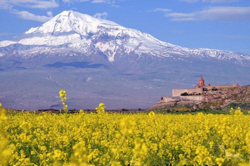shutterstock_338019038_Armenien_Berg_Ararat_Kloster_Chor_Virap_500.jpg